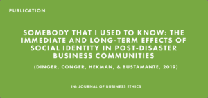 Publication: Somebody That I Used to Know: The Immediate and Long-Term Effects of Social Identity in Post-Disaster Business Communities